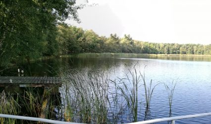 Jezioro Sławskie – walory przyrodnicze