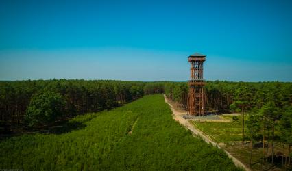 Wieża widokowa Joanna – Sława i okolice