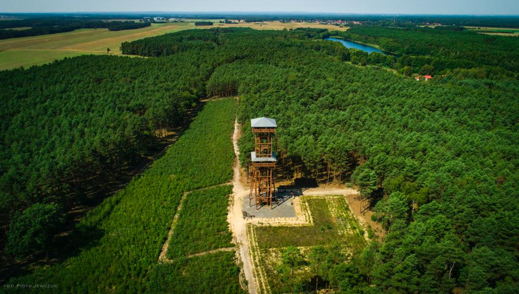 wieża widokowa Joanna koło Sławy