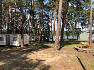 pole namiotowe w lesie nad Jeziorem Sławskim